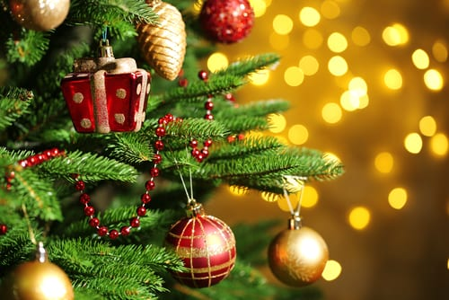 shutterstock_228613051 - Oh Christmas Tree How Lovely Are Your Branches Lyrics